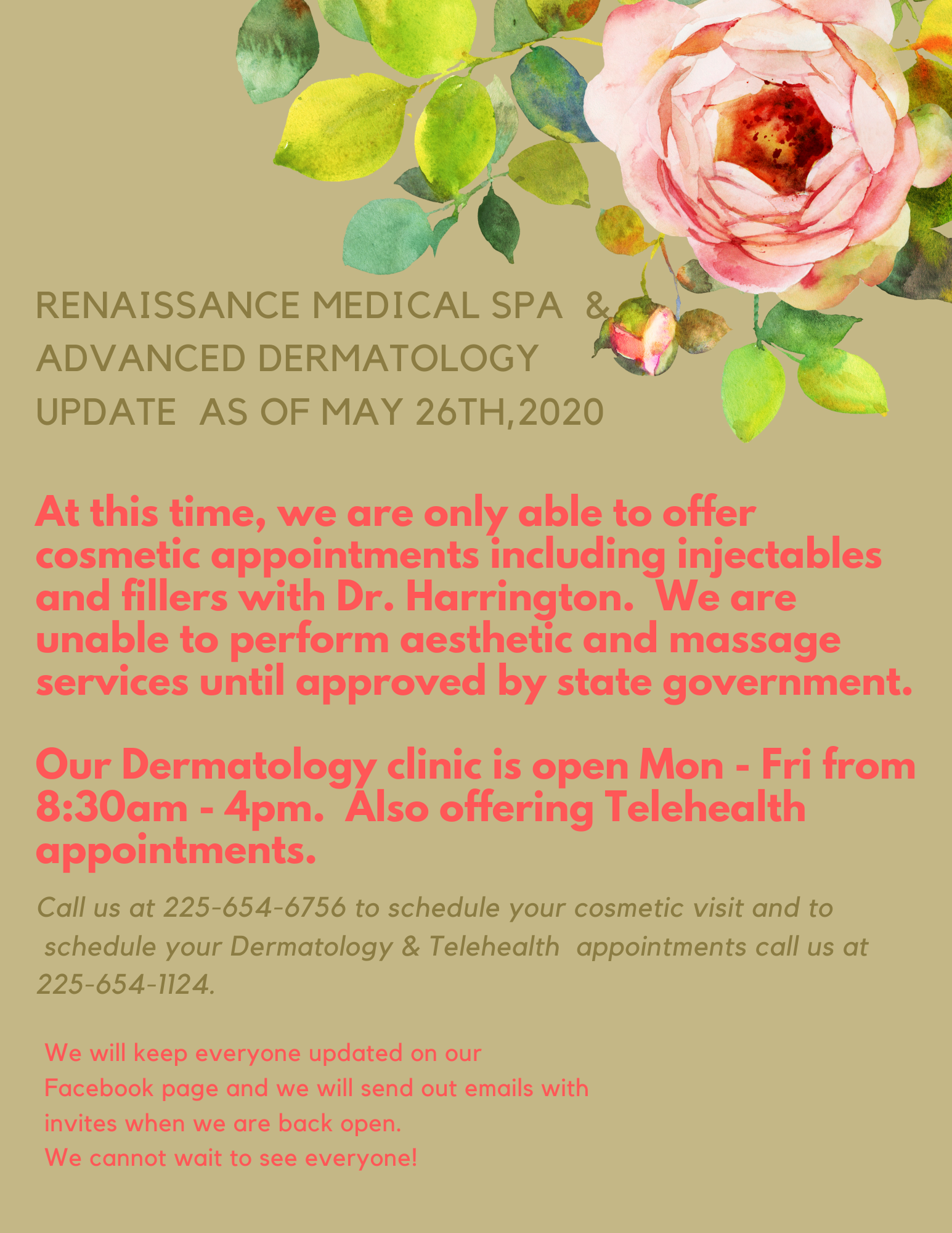 Renaissance Medical SPA update may 26,2020 website